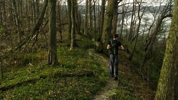 Heathens in Nature: Bender Mountain post Thanksgiving Walk