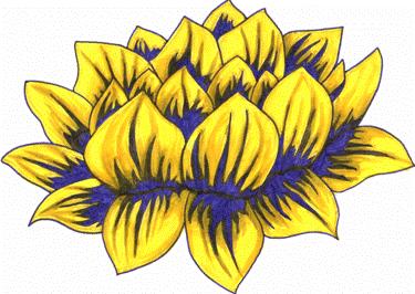 Golden Lotus Meditation Group