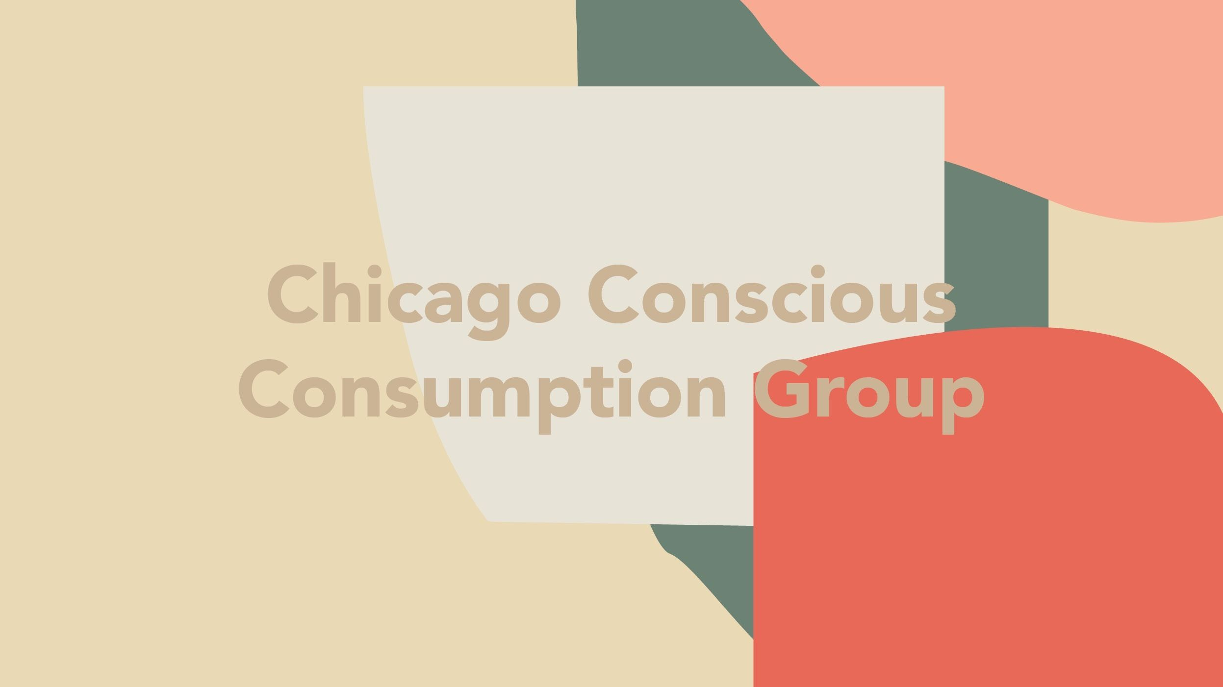 Chicago Conscious Consumption Group