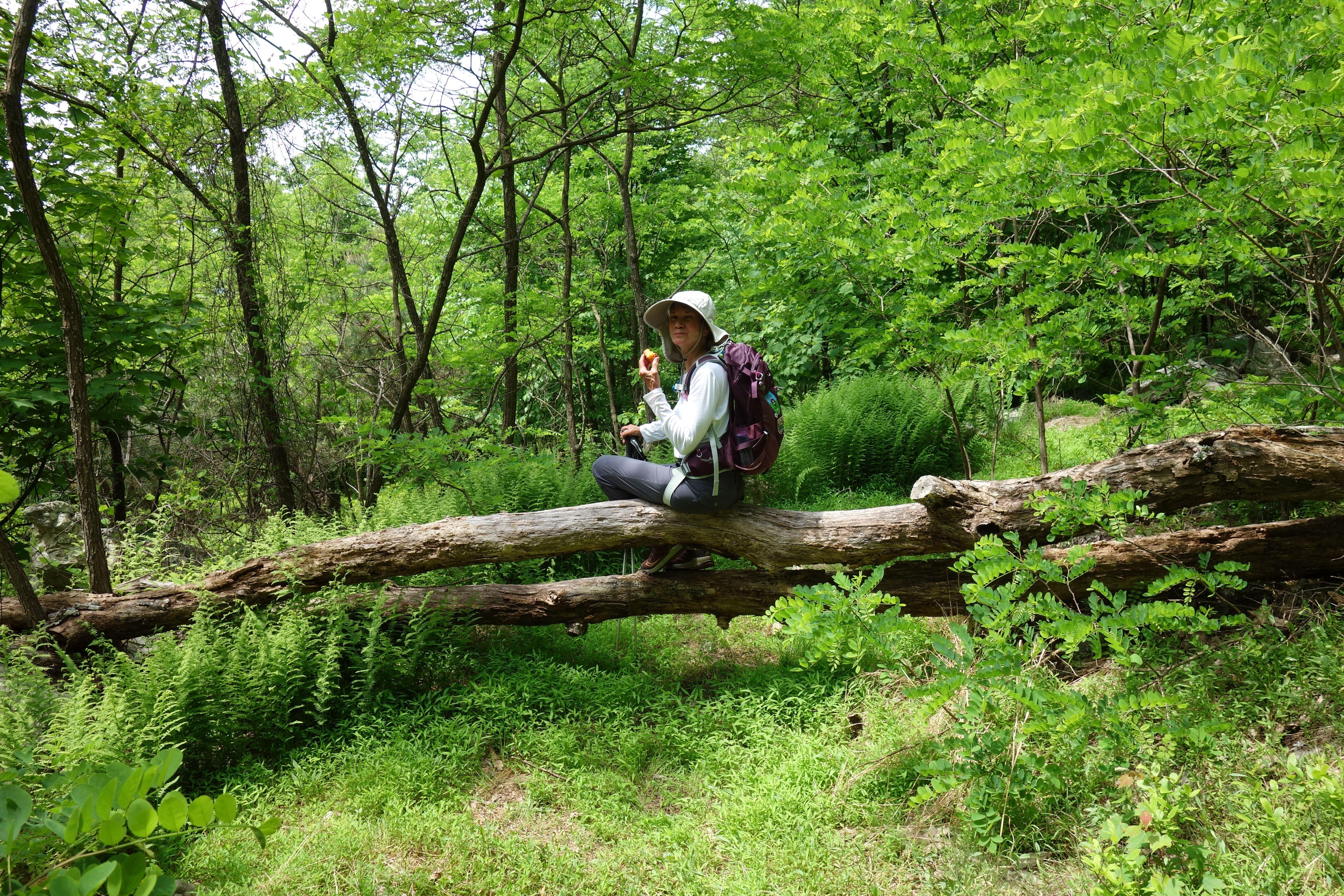 Blue Mountain Hiking Club