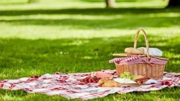 Lazy Sunday Picnic in the park at 1.5m
