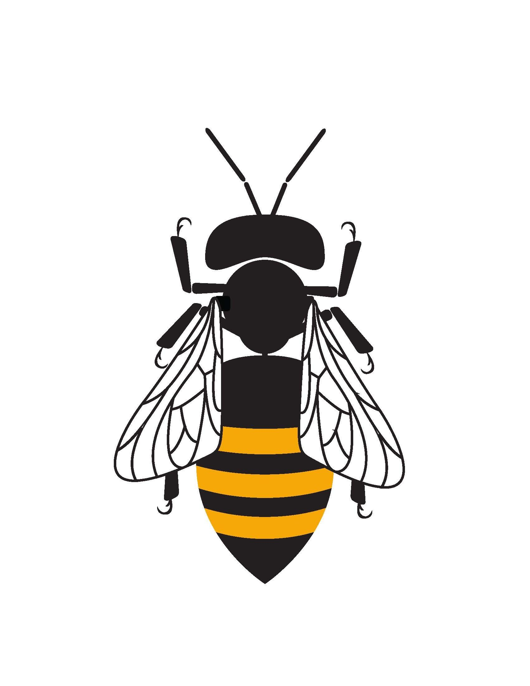 The Queen Bee Networks