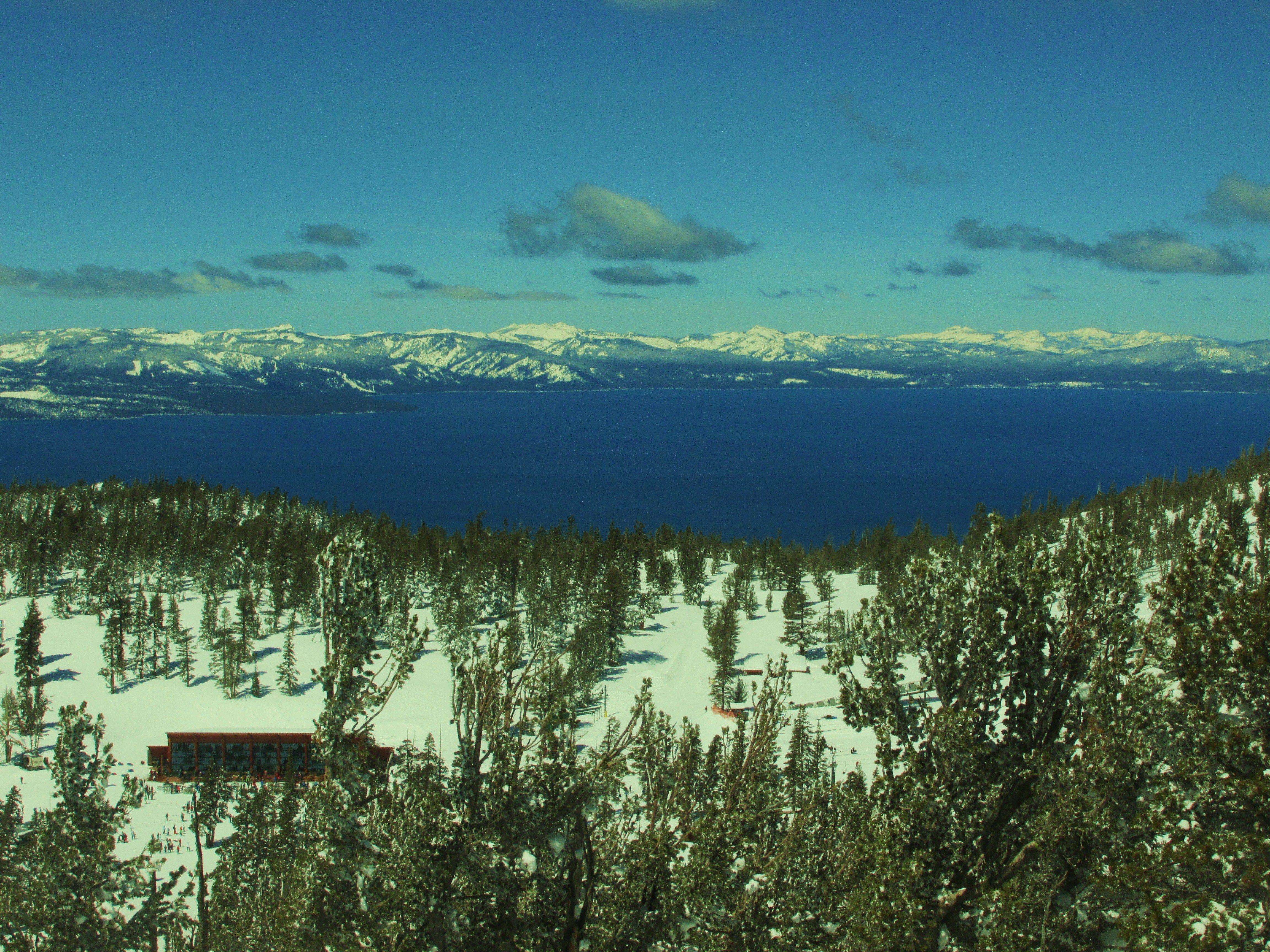Pine Point Ski Club