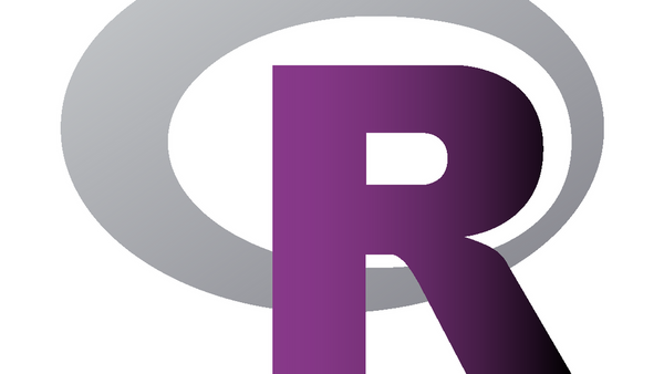 R-Ladies Learns is a workshop and meetups focused for ladies to help them learn R. We exists to promote gender diversity in R community. Our priority is to provide a safe community space for anyone identifying as a minority gender who is interested in and/or working with R.