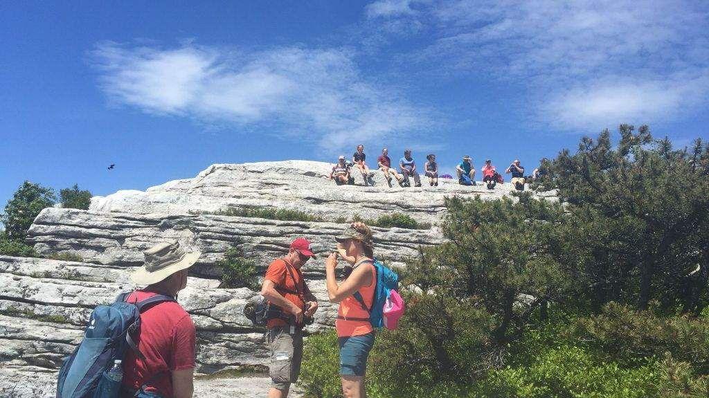 Hiking, Biking, Camping & Music