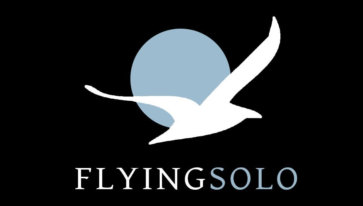 Flying Solo - Singles Events London