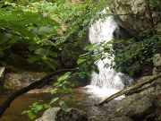Photo for Hazel Falls and Caves ~ 5.5 Miles, Moderate August 25 2019