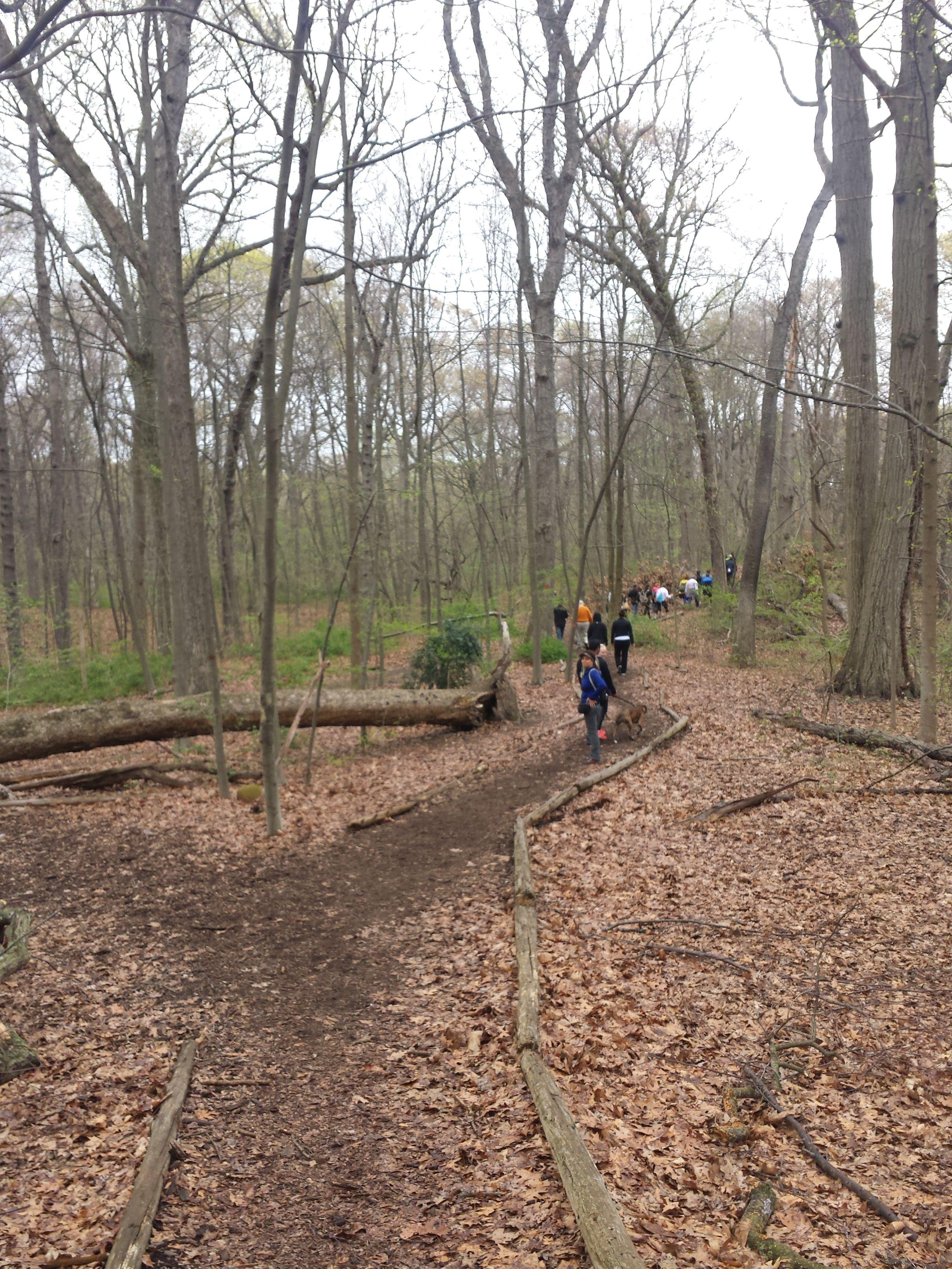 Photos - Kew Gardens Hiking (Kew Gardens, NY) | Meetup