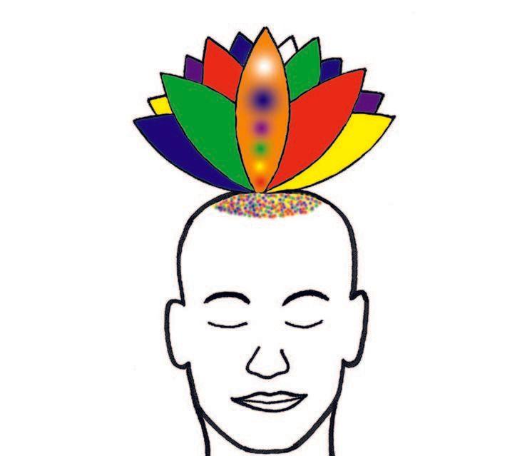 Sahaja Yoga Meditation - 1.30pm on Saturdays