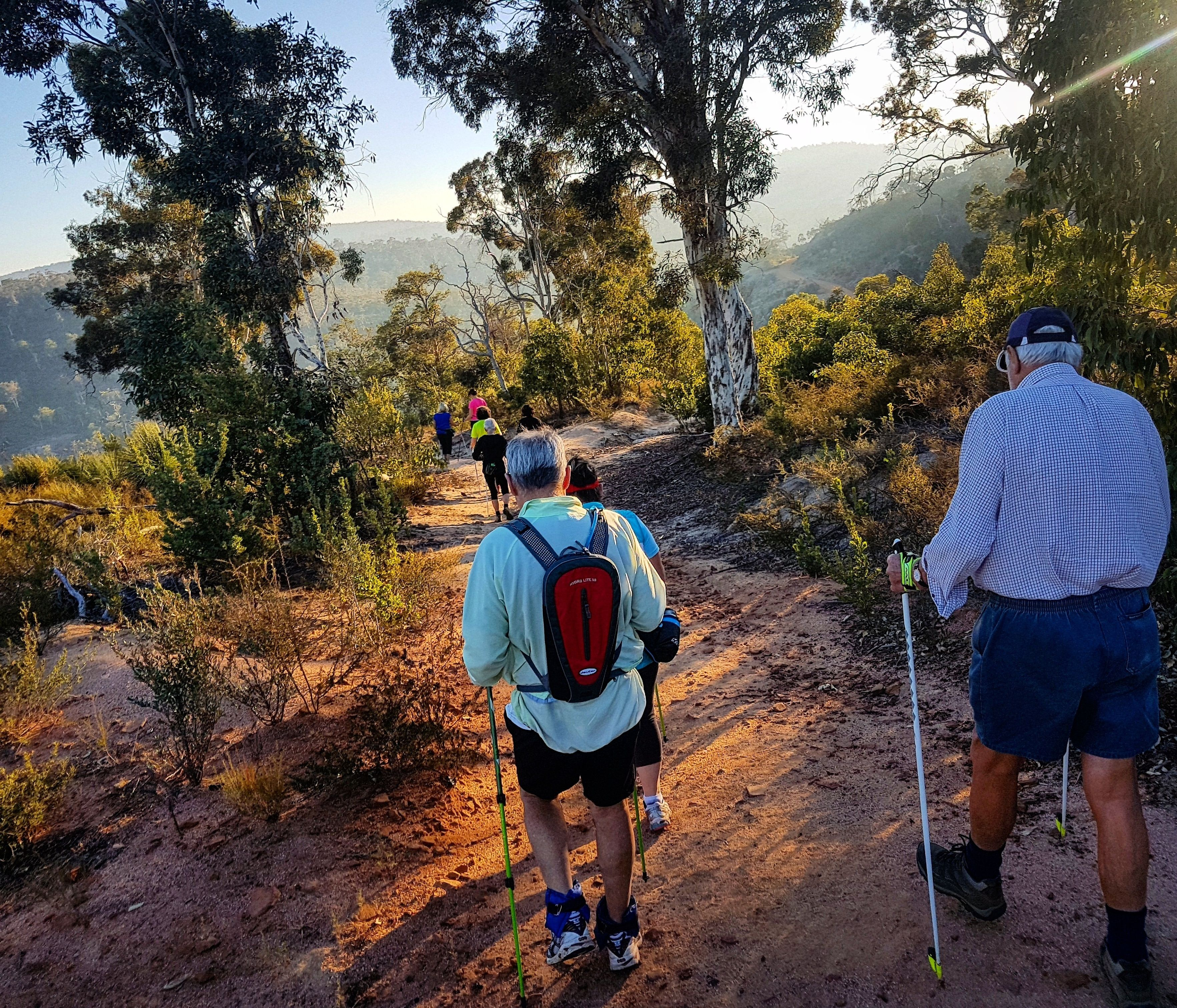 Nordic walking / Hiking