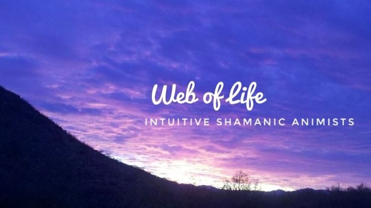 Web of Life-Intuitive Shamanic Animists