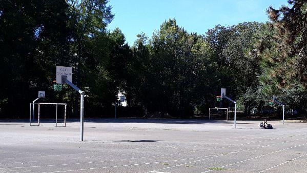 entrainement basket ball proc c3 ou c6 meetup. Black Bedroom Furniture Sets. Home Design Ideas