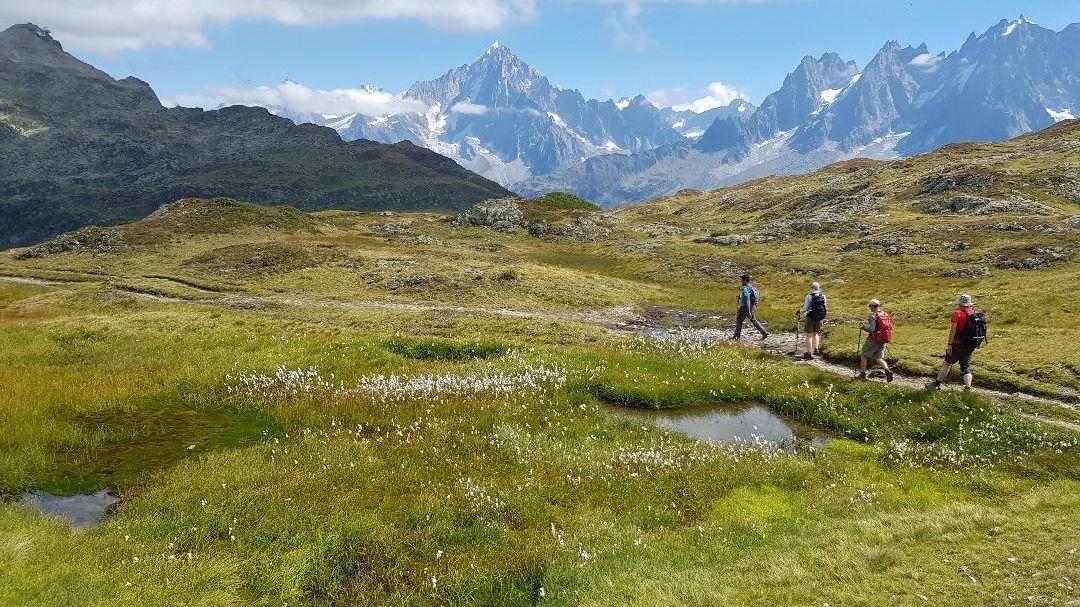 BACKABUSH XPLORERS - Hiking & Outdoor Adventure Meetup Group