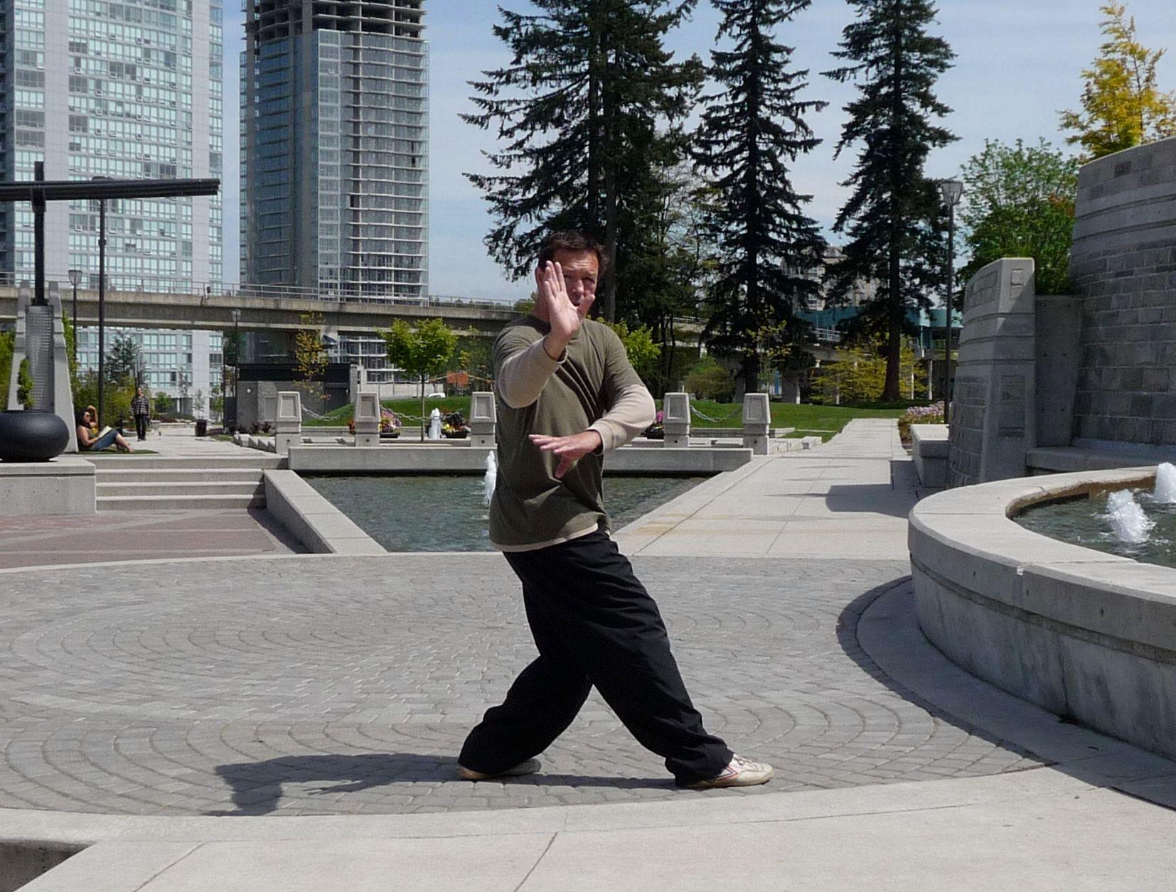 Applications focused Martial Arts (Bagua Vancouver Surrey)