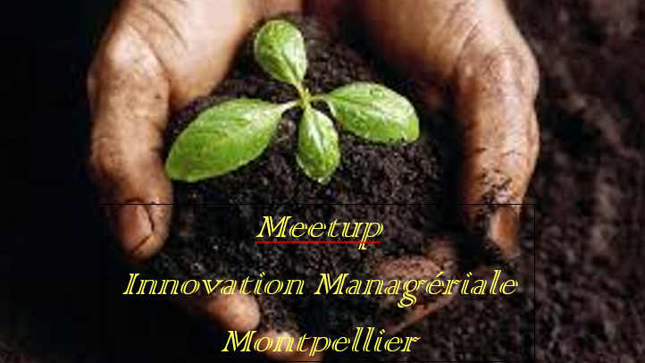 Innovation Managériale Montpellier