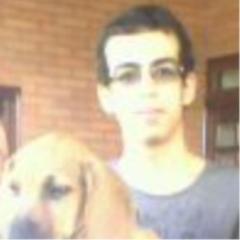 Arthur Vinicius Alves S.
