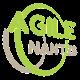 Agile N.