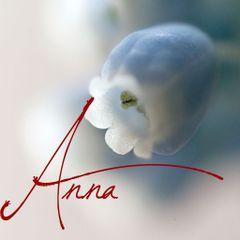 Anna H