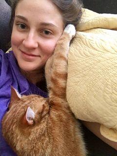 Cat D.