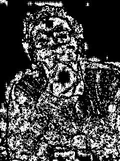 higusumi