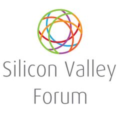 Silicon Valley F.
