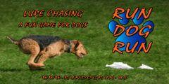 Run Dog R.
