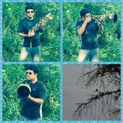 Ravindranath B