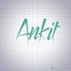 Ankit S.