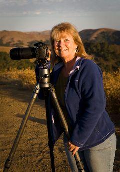 Beth H.