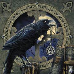 Raven M.