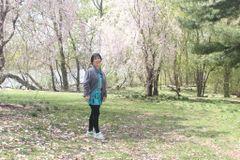 Yongyan(Laura)  L.