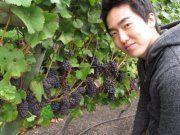 Bryan Yongjoon L.
