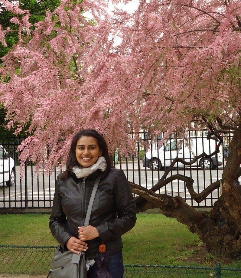 Cherry blossoms asian hookup already a member