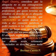 Breitner Cuesta P.