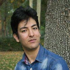 Ramin F.
