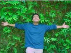 Abhinav P