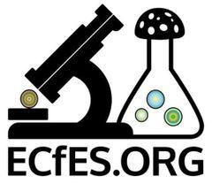 ECfES.org