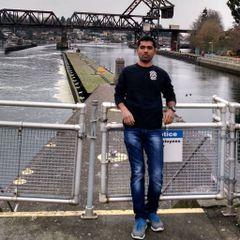 Anil Kumar K K
