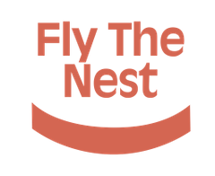 Fly The N.
