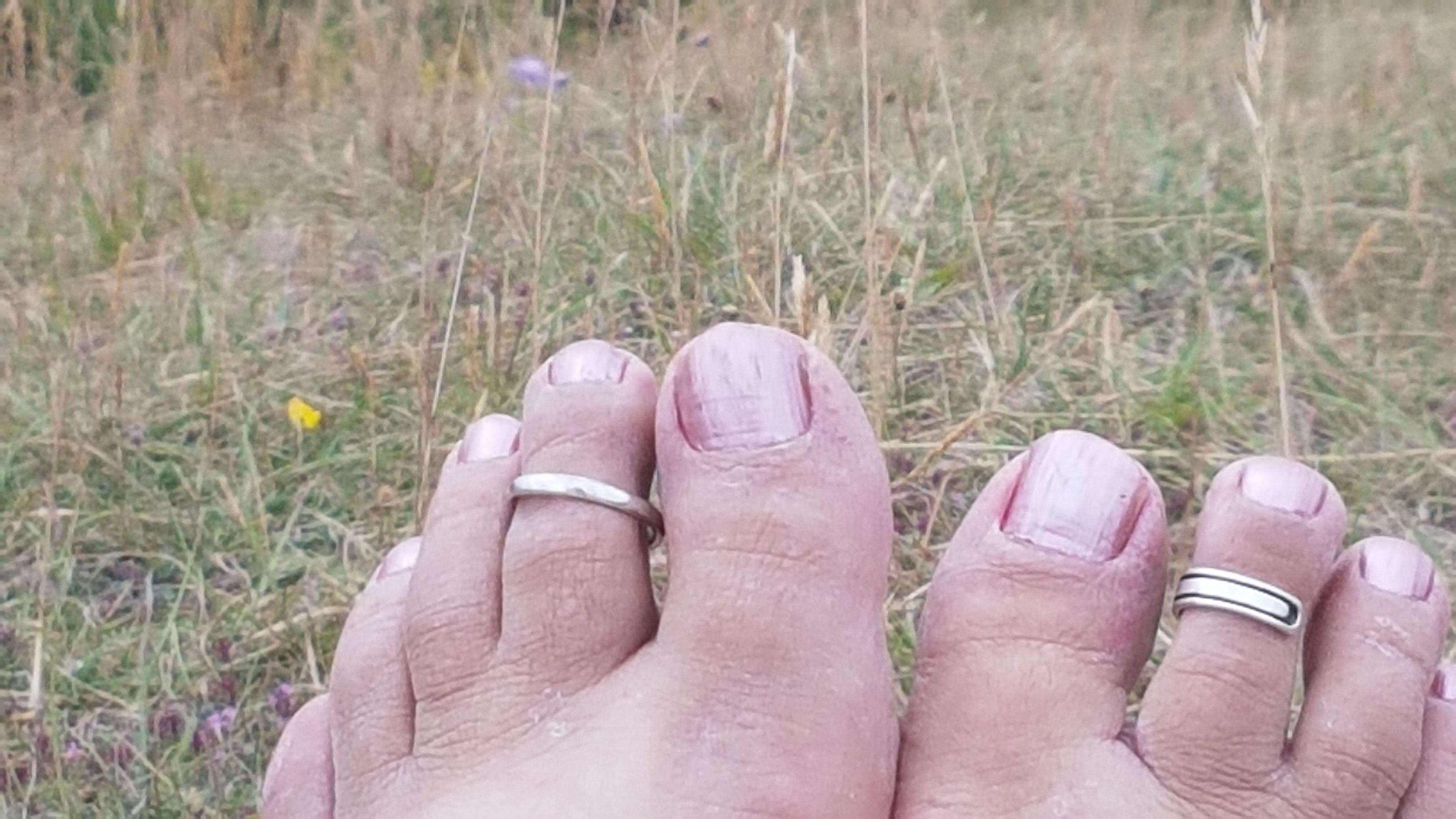 Rosie - Herts Beds  Bucks Barefoot Society Houghton -1259