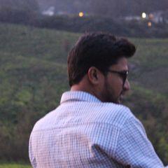Aditya V.