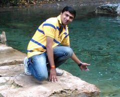 Narayan N.