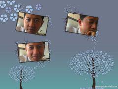 John Chan (.