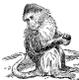 Monkey Mind Zen P.