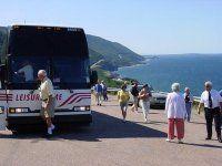 Busbean