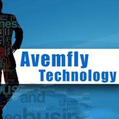 avemfly T.