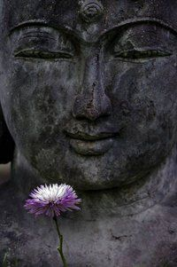 Madison Rinzai Zen C.