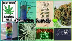 Cannabis F.