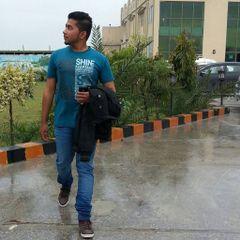 Wajid Ali D.