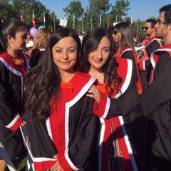 Zeynep Akkalyoncu Y.
